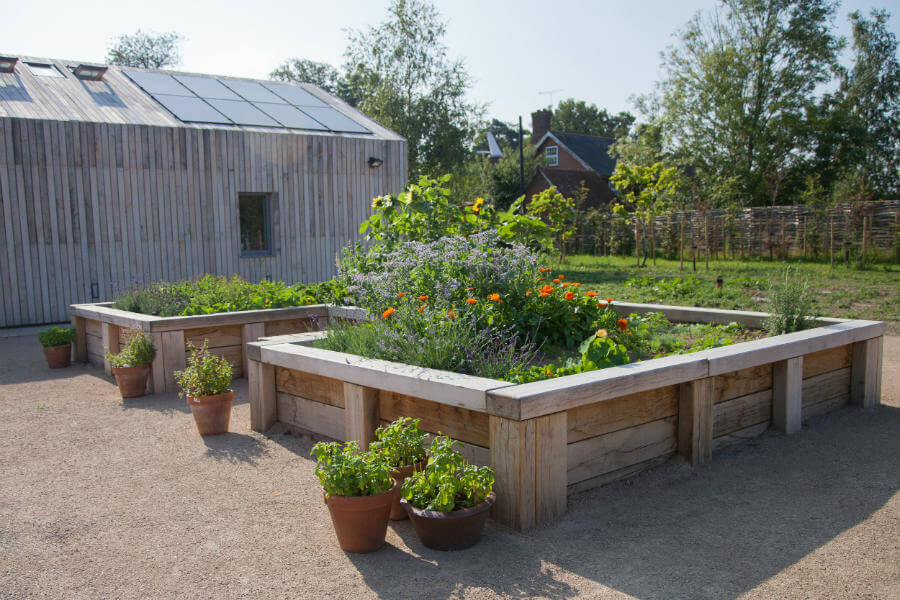 Shop Garden - Herb Garden
